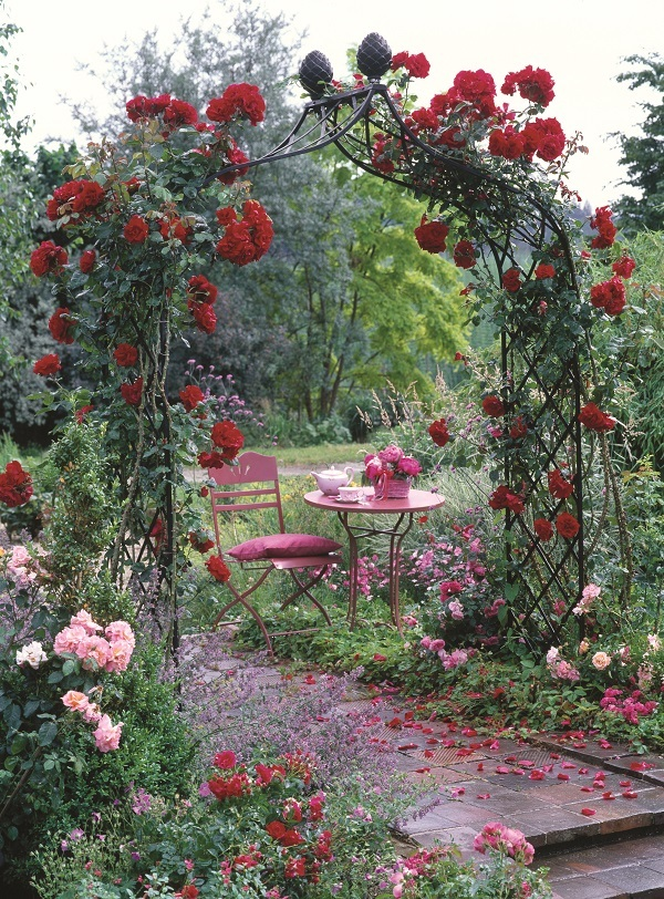 Classic Victorian Rose Arch Kiftsgate covered in a beautiful climbing rose display