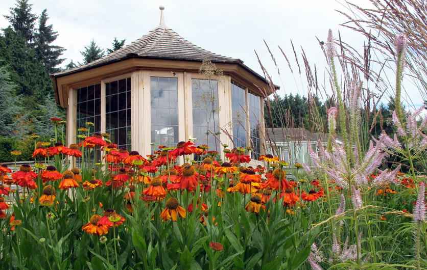 Classic Timber Summerhouses & Garden Rooms in Western Red Cedar