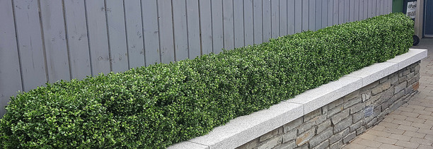 Artificial Boxwood Hedging , artificial Boxwood Hedge installed in Clonskeagh