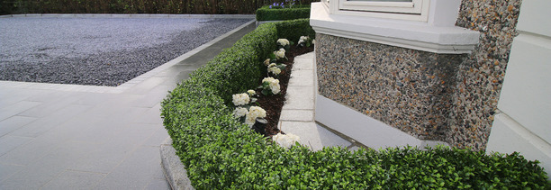 Ireland's best selling synthetic Box Hedging | Owen Chubb GardenStudio. Tel 087-2306128