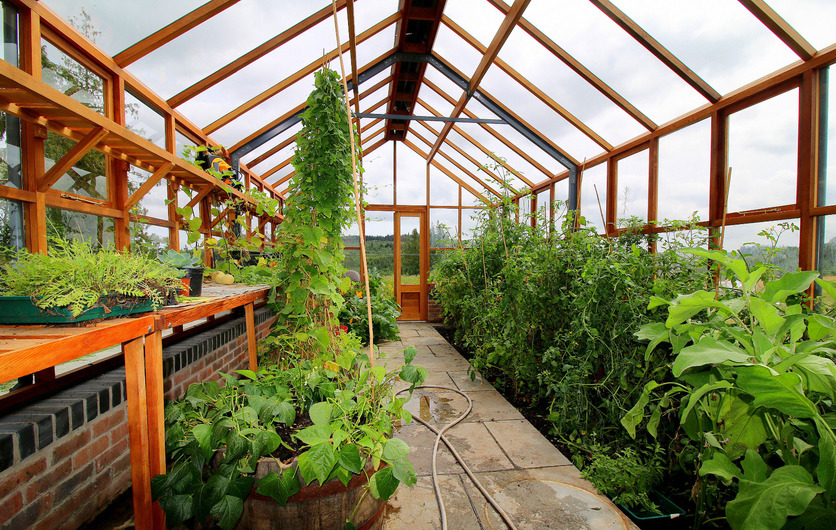 Classic Twelve Timber Greenhouses - plenty of space and height for growing - supplied + fitted nationwide