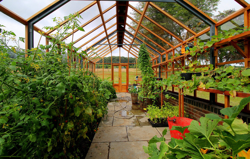 Classic Twelve timber Greenhouses provide incredible growing capacity and scope