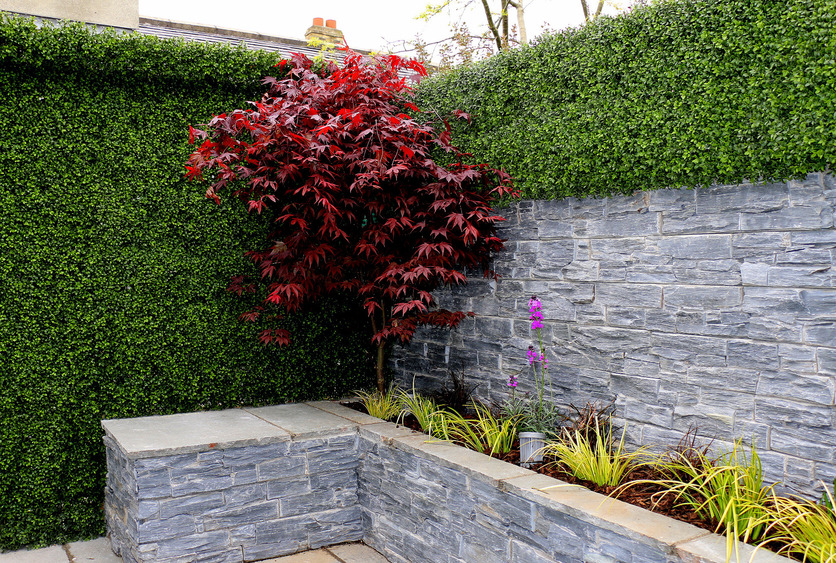 Boxwood Wall Cladding (Artificial Buxus)