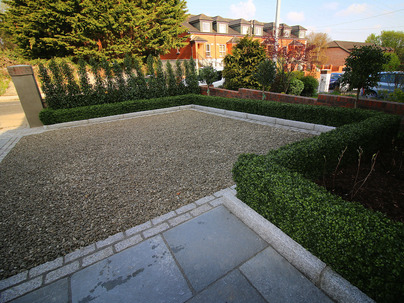Medium Boxwood Hedging in Front garden, Rathfarnham, Dublin