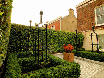 Boxwood Hedging, Artificial Box Hedging borders in Rathmines