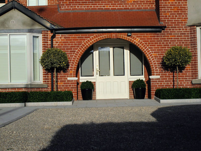 Medium Boxwood Hedging in Front garden, Terenure, Dublin