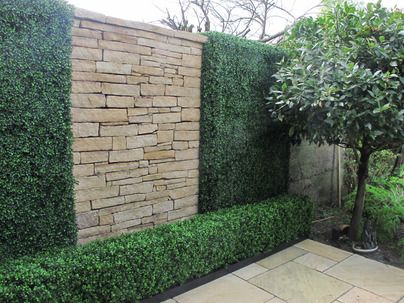 Boxwood Wall Cladding & Privacy Screening in Rathgar garden